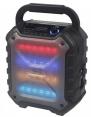 Mobile Discosoundmaschine PS06BT von Reflexion